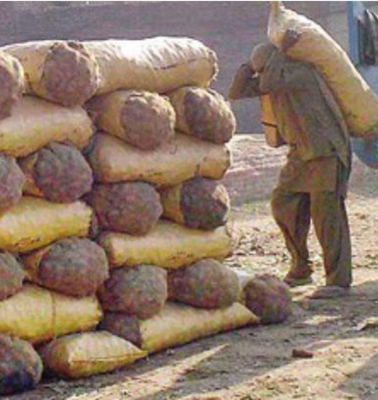 Lower Potato Crop, Higher Market Prices – Greenworks