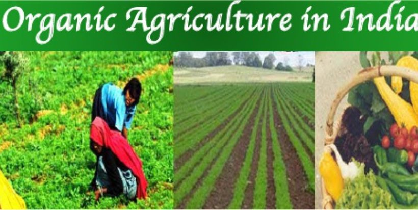 India to expand 2,000 hacter of organic farming ! – Greenworks