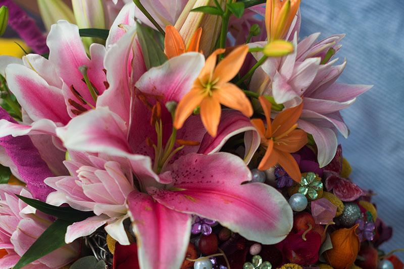 spring-flower-bulbs.jpg