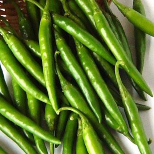 chilli-hot-green-f1-greenworks-Pakistan