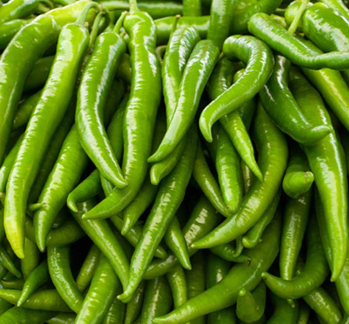 green-chilies-hybrid-seeds-greenworks-Pakistan