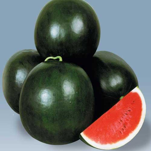 greenworks-watermelons-seeds-Pakistan