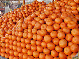 125,000 tonnes of kinno exported from Pakistan
