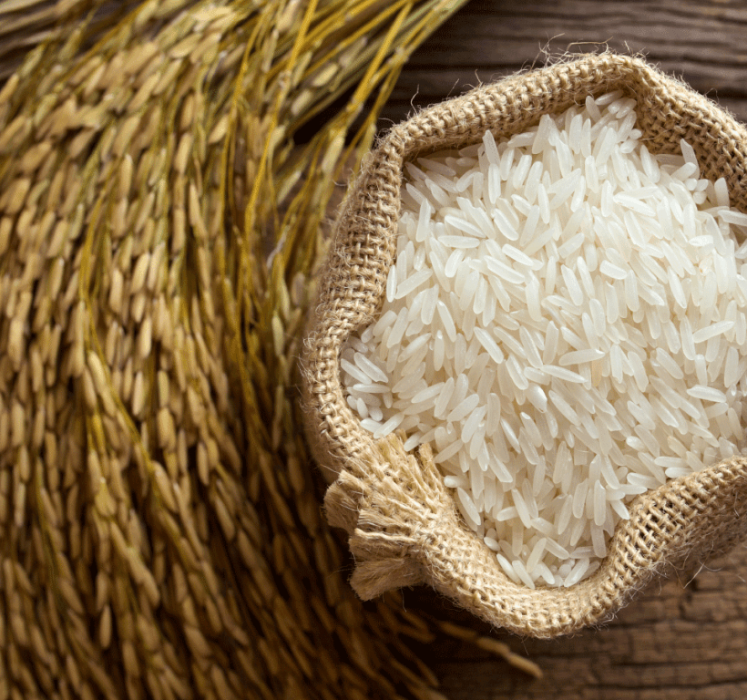 Use of certified seeds can enhance yield, quality of rice