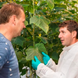The exclusive partnership in the UK horti industry